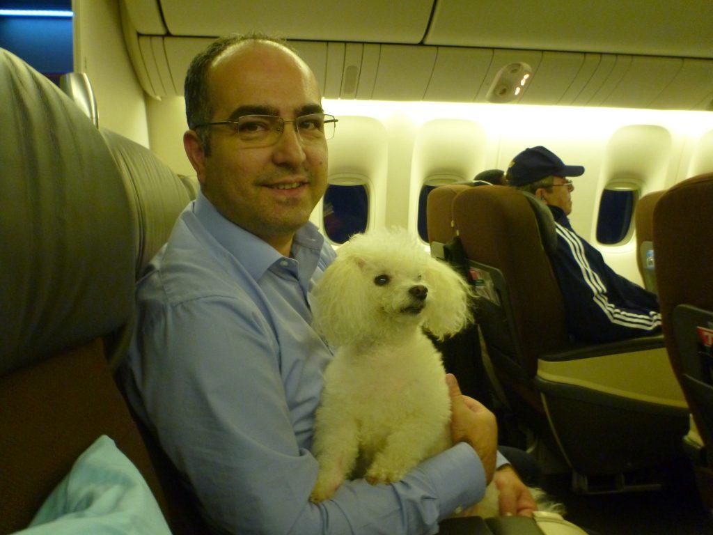 Biblo ile Amerika'ya uçuyoruz